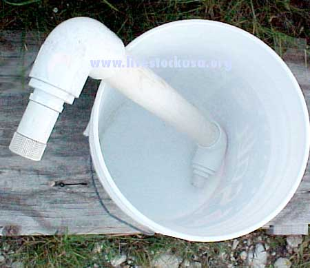Water Filter and Bucket